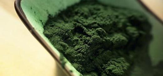 Polvo de alga espirulina